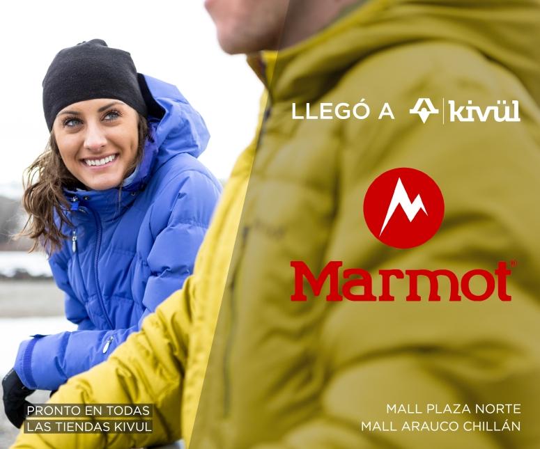 llego marmot-01